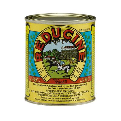 Reducine Absorbent 450 g