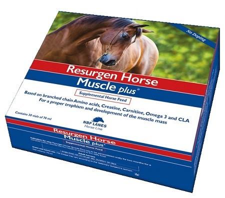 Resurgen Horse Muscle 30 flaconi 70 mL
