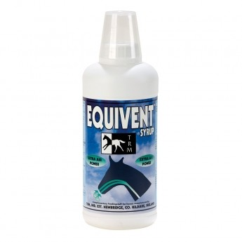 EQUIVENT SYRUP 1L